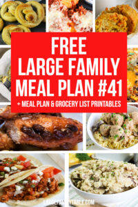 Large Family Meal Plan 41