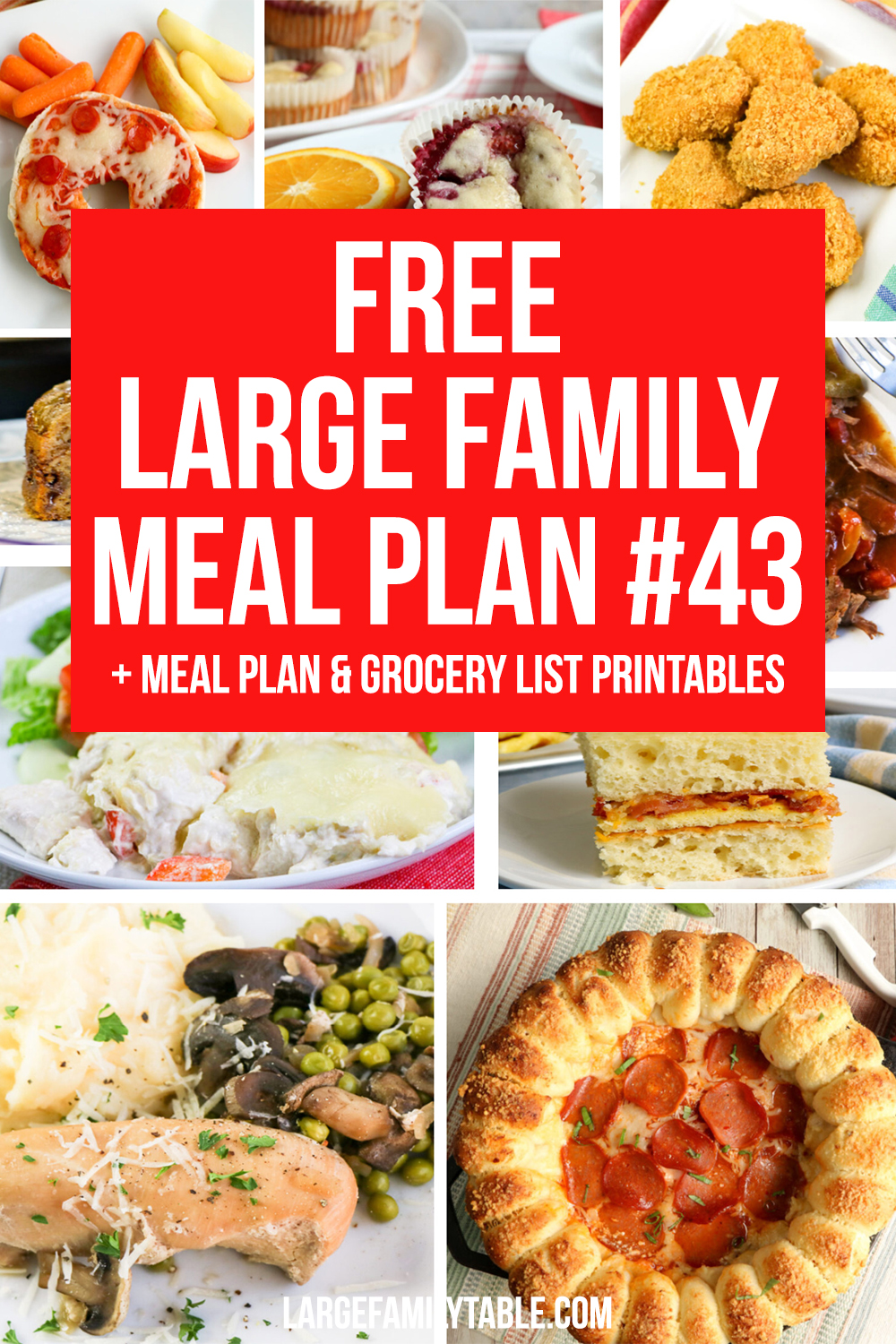 Large Family Meal Plan 43