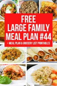 Large Family Meal Plan 44
