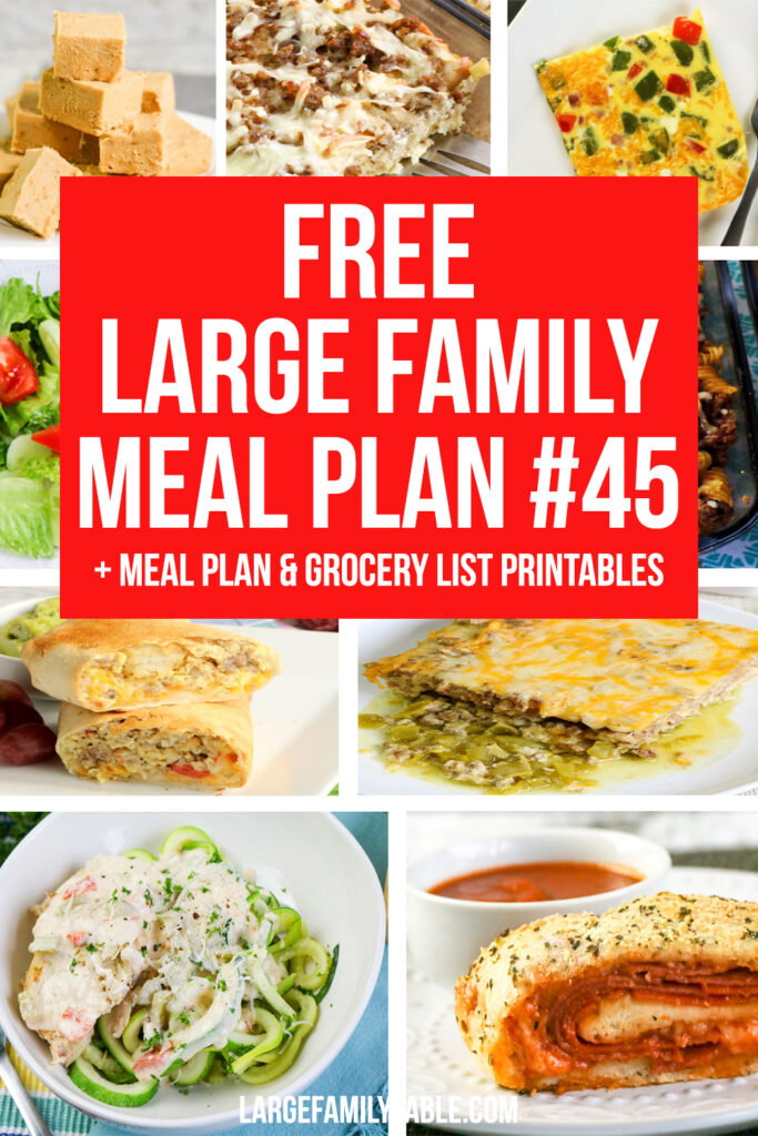 Budget-Friendly Large Family Meal Plan #45