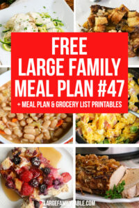 Large Family Meal Plan 47